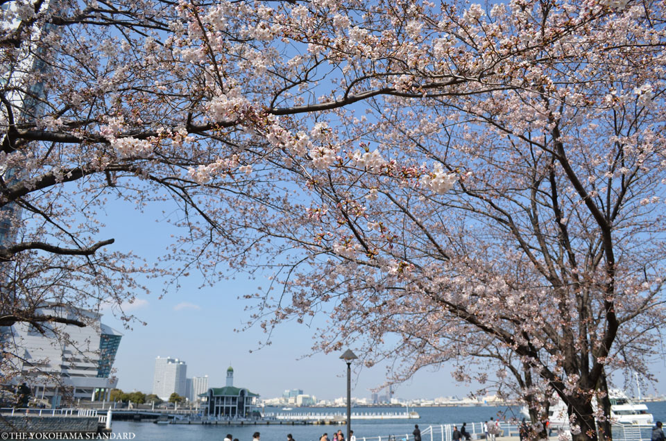 2017カップヌードルミュージアムパーク7-THE YOKOHAMA STANDARD