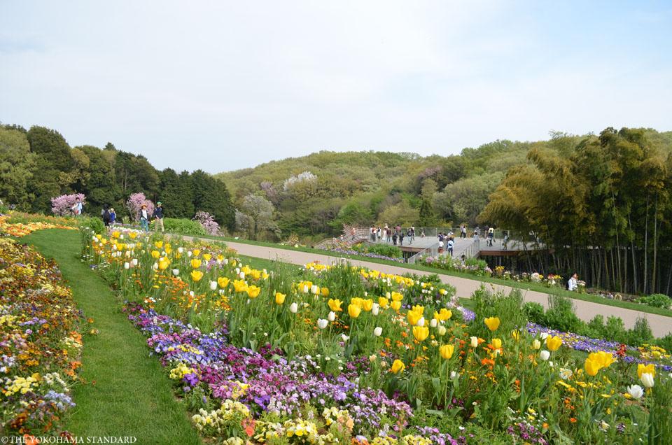 里山ガーデン6-THE YOKOHAMA STANDARD