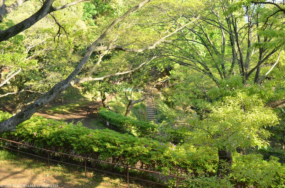 山手公園16-THE YOKOHAMA STANDARD