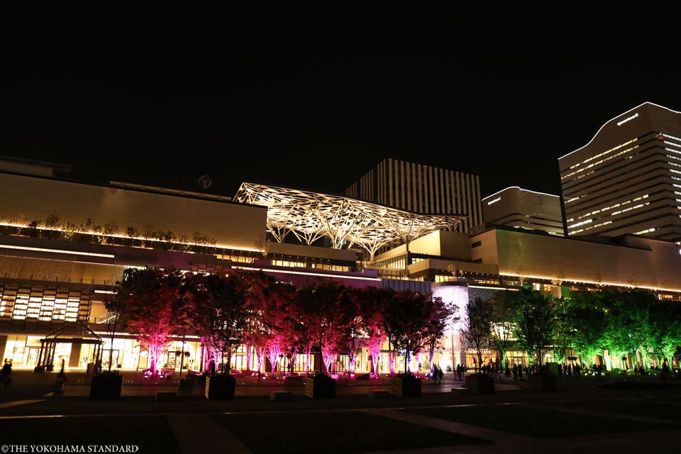 夜のグランモール公園・緑化フェア2-THE YOKOHAMA STANDARD